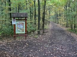 Széchenyi Parkerdő és Ökoturisztikai Központ